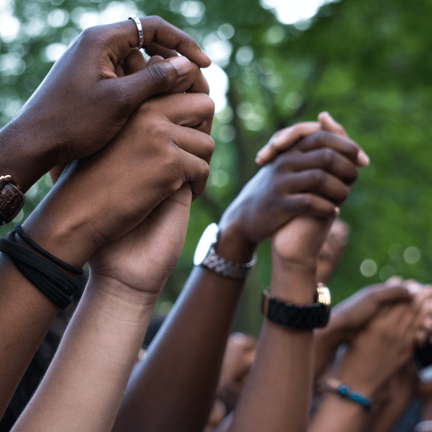 multiracial hands clasped together overhead in protest